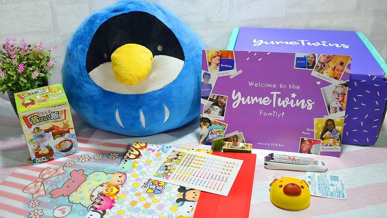 Unboxing Japanese Yumetwins Subscription Box